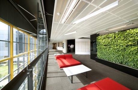 办公室设计中的绿化选用